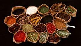 Traditional Chinese Medicine Training