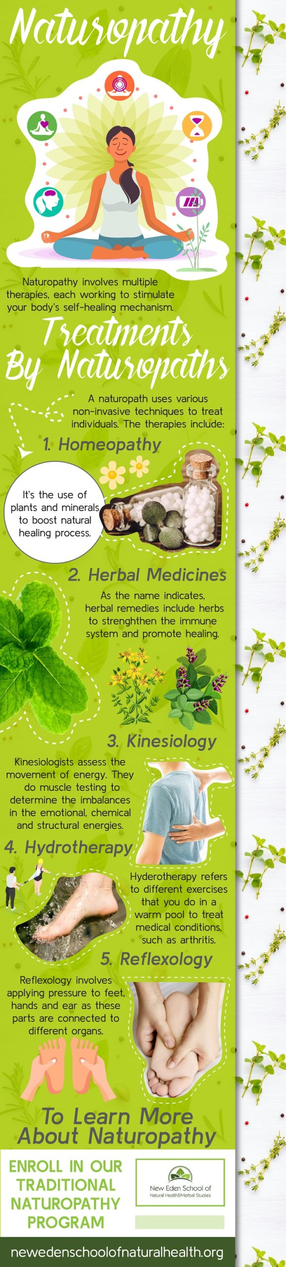Naturopathy - An Infographic Complete